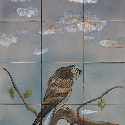 Falke - 80 x 60 cm